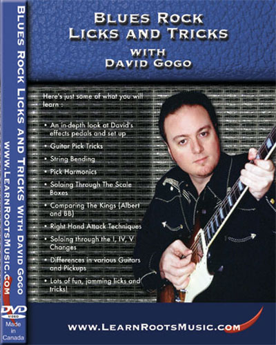 Blues Rock Licks and Tricks  DVD (DGDVD01)