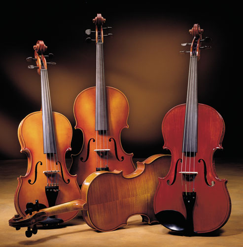 Scherl & Roth Prelude Series Viola Outfit With Horsehair Bow (R401EH)