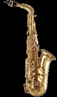 Zonda Student Alto Saxophone Outfit, Honey Gold Lacquer (AS101)
