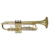 Wisemann DTR200 Student Trumpet with Hard Plactic Case (DTR200)