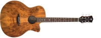 Luna Gypsy Exotic Spalt Acoustic / Electric - Gloss Natural (GYPESPALTGC)
